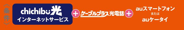 <条件>  chichibu光 インターネットサービス + ケーブルプラス光電話 + auスマートフォン または auケータイ でご指定のデータ定額サービス等のご加入